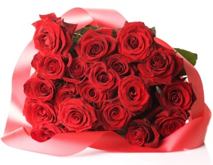 20_red_roses_bunch